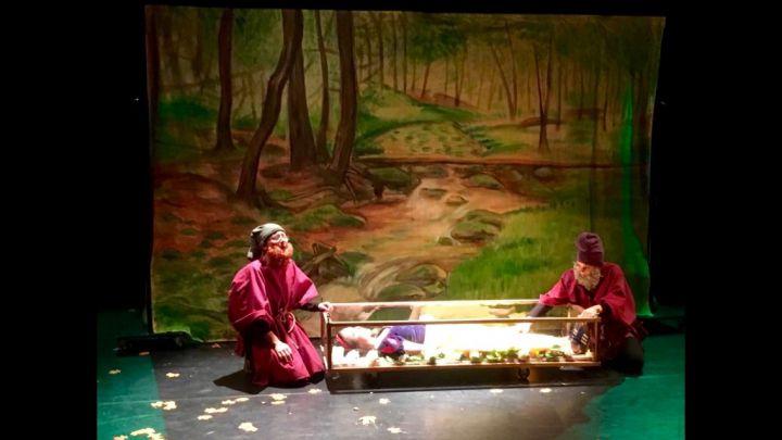 Sneeuwwitje door Het Kleine Theater — De Krakeling, theater voor de jeugd te Amsterdam